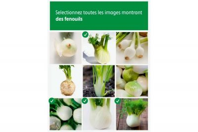 Intermarché Captchas2