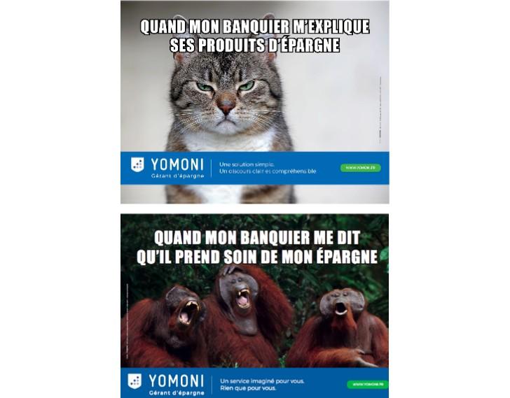 Yamoni